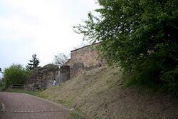 Les ruines du château