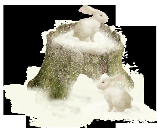 hiver oiseaux