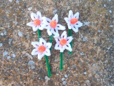 Fleurs version 2 (2)