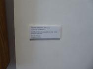 Sortie au musée d'art naïf