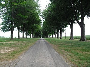 allee du chateau1