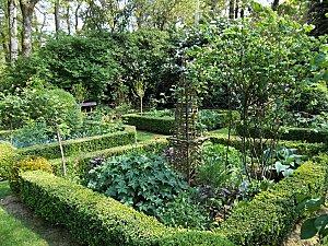 le jardin retiré (15)