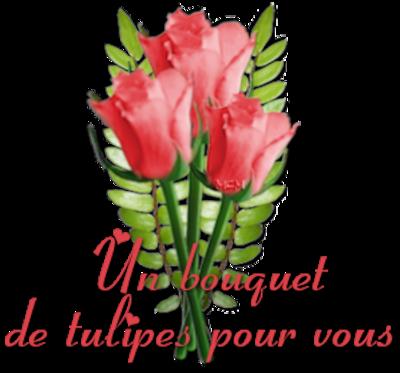Voyage en Holland pays des Tulipes !