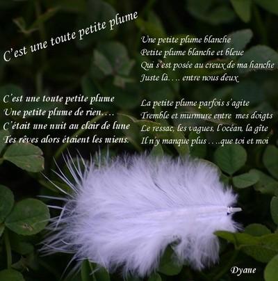 Blog de dyane :Traces de Vie, C'est une toute petite plume