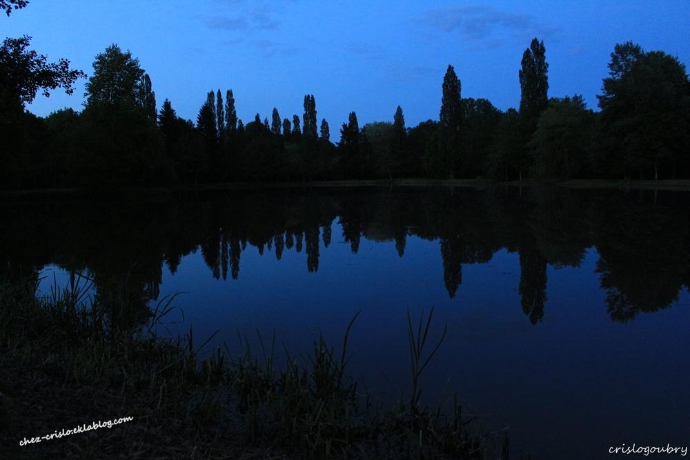Dans le Loir et Cher