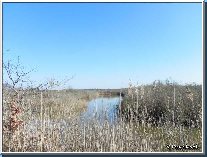 Les plaines du Teich et le domaine de Fleury - 5/8