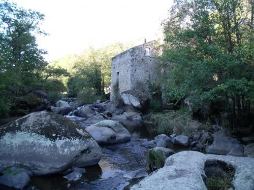 PIQUET, les petites Pyrénées Vendéennes