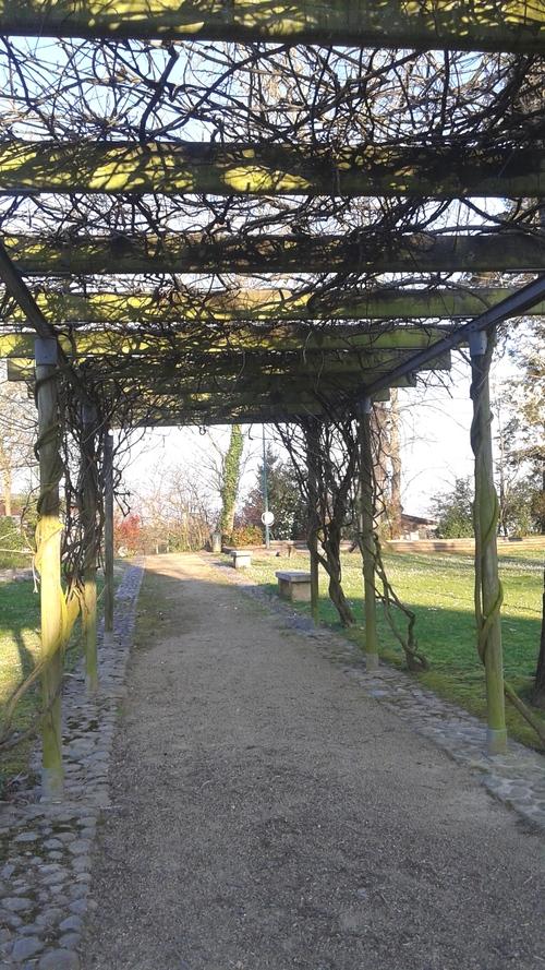 Le parc de la commune s'éveille !