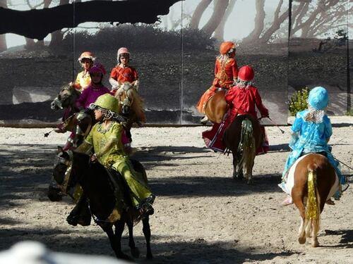 Concours des talents équestres - Haras de la Vendée- Prix spécial du jury !!!!!!! ;)