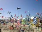Le festival des cerfs-volants