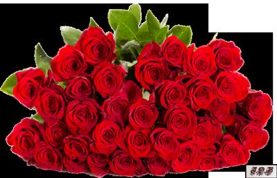 Tubes : Fleurs/bouquets