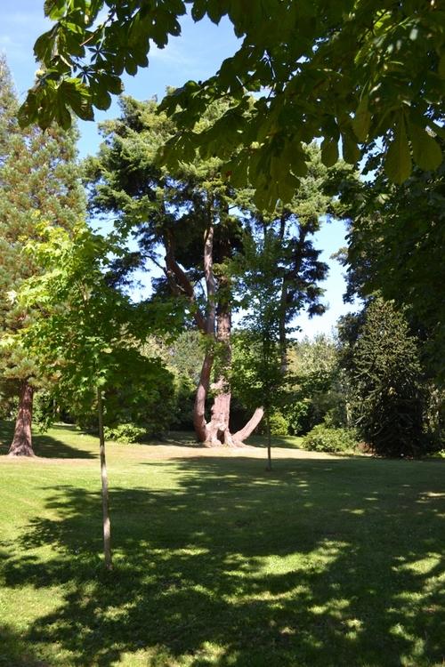 Le château de Tourlaville