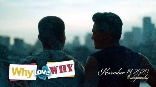 °WHY LOVE WHY°