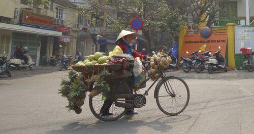 4 au 15 janvier - Vietnam : de Hanoi à Hoi An