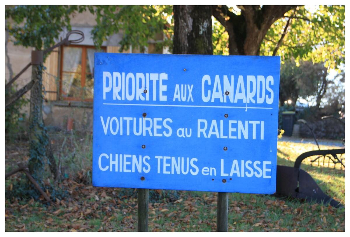 au port de Mortagne sur Gironde (17)