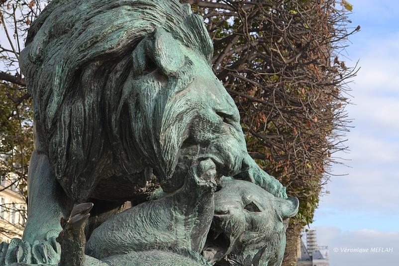 Jardin des Tuileries : Lion et lionne se disputant un sanglier de A. N. CAIN