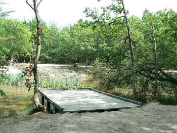 Le circuit de la forêt d'Evreux