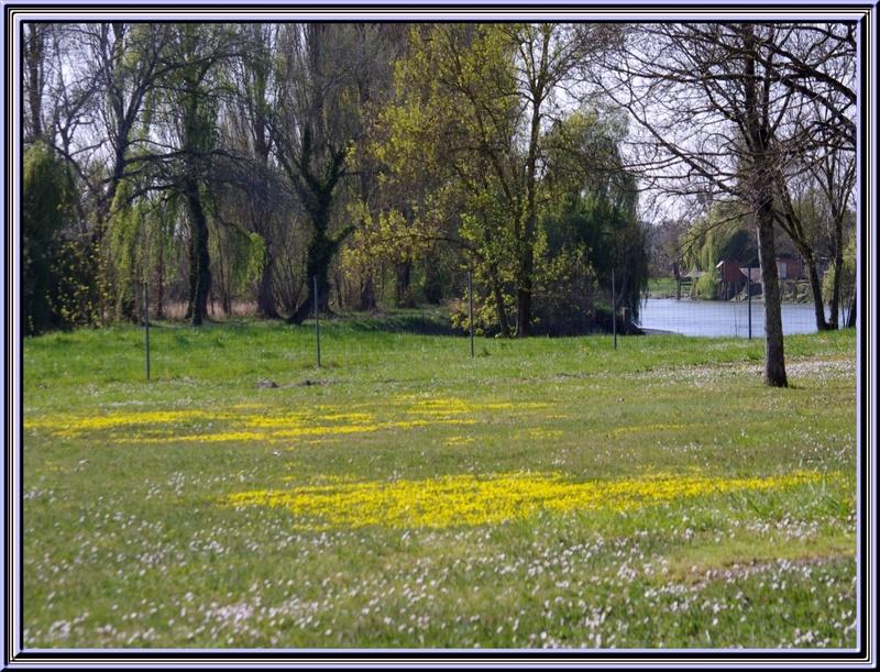Un joli petit village sur les bords de la Charente :St Savinien (17)