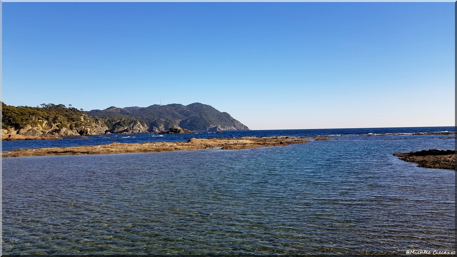 Balade sur l'île du Petit Gaou (Le Brusc)