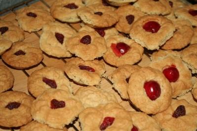 biscuit--1-.JPG