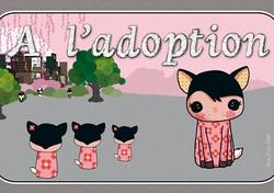 A adopter - Clic pour aller voir