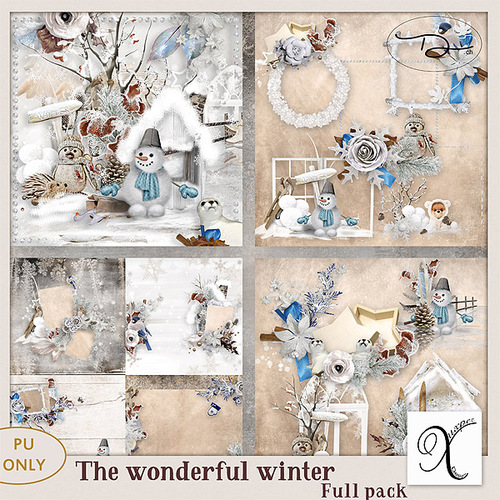 The wonderful winter Kit