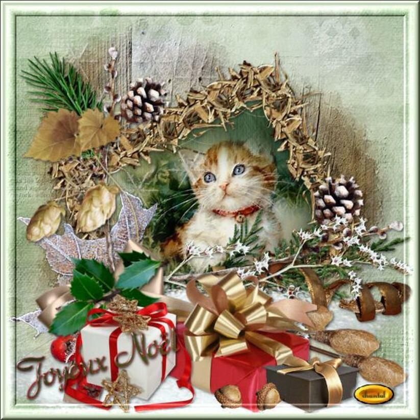 Merci Chantal pour ce beau cadeau de Noël