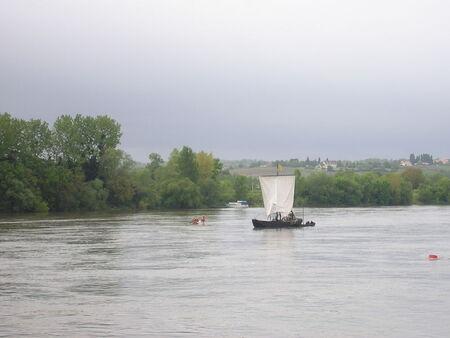 Ancenis_F_te_de_la_Loire_003