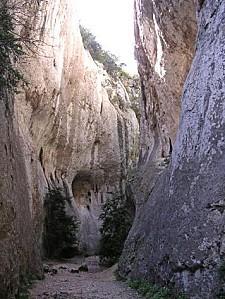 gorge1(5) prefRes