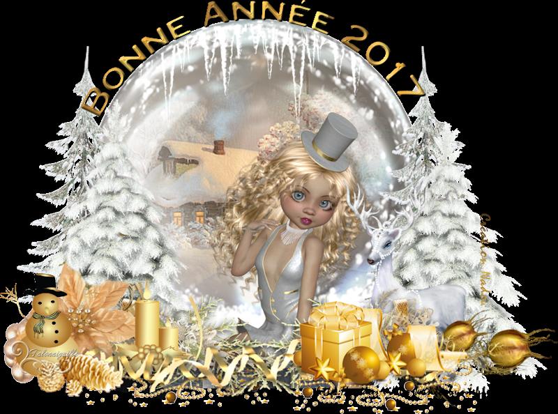 *** 01 28 Bonne année 2017 ***