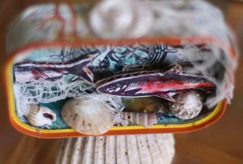 Grosse comme ça, c'est pas une sardine... c'est un thon !!