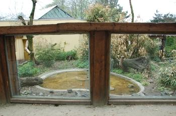 Zoo Osnabruck d50 2012 234