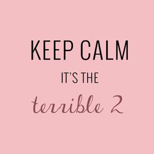 Quand le Terrible Two frappe à ta porte... Ou comment maudire la crise des 2 ans