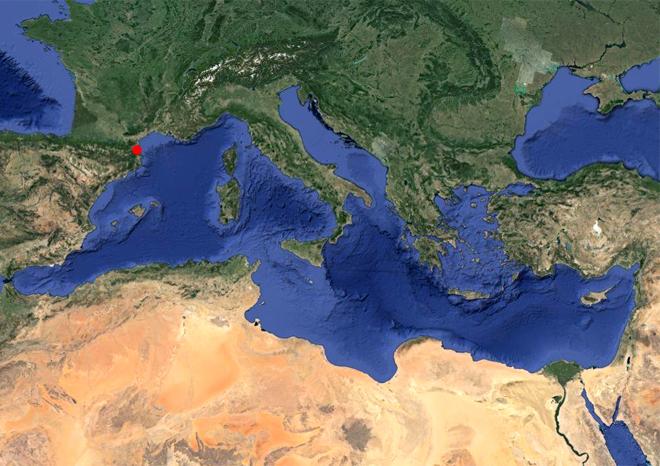 Polyxenia en Méditerranée