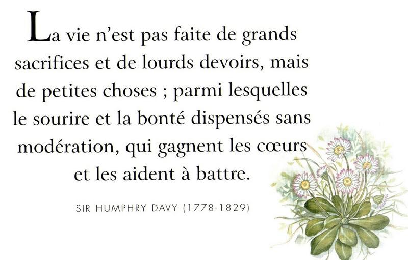 Citations Sur Lamitié Le Monde De La Philo Et De La Poésie