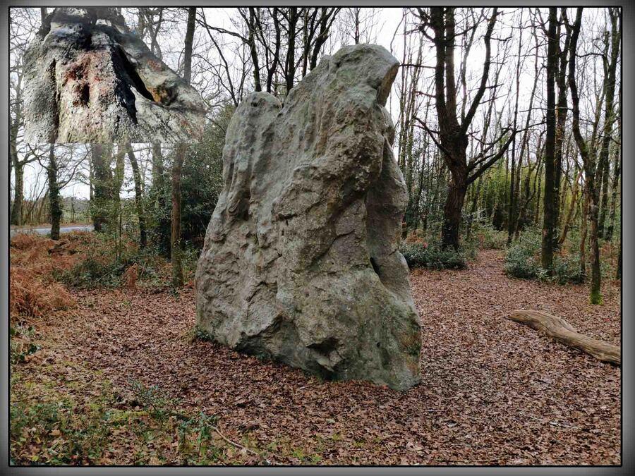 « Le Menhir de Pierre-Levée »