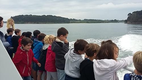 Croisière sur le Golfe du Morbihan en cycle 2