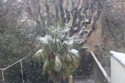 Même que chez moi, il neige...