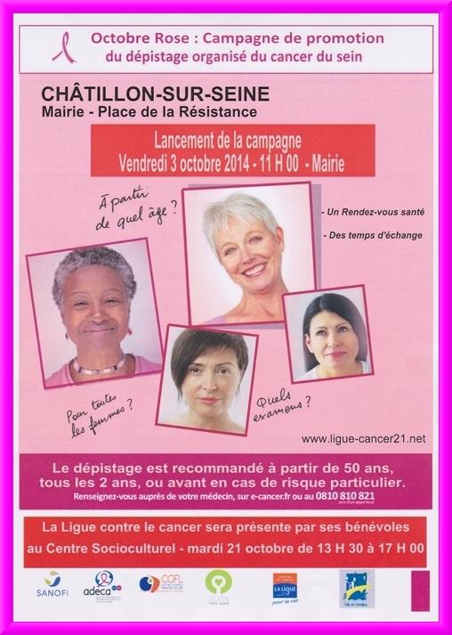 """""""OCTOBRE ROSE""""  : campagne de promotion de dépistage organisé du cancer du sein"""
