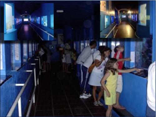 Banyuls---Aquarium.JPG