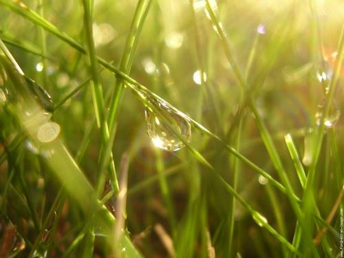 Ma soeur la pluie (poème de Ch. Van Lerberghe)