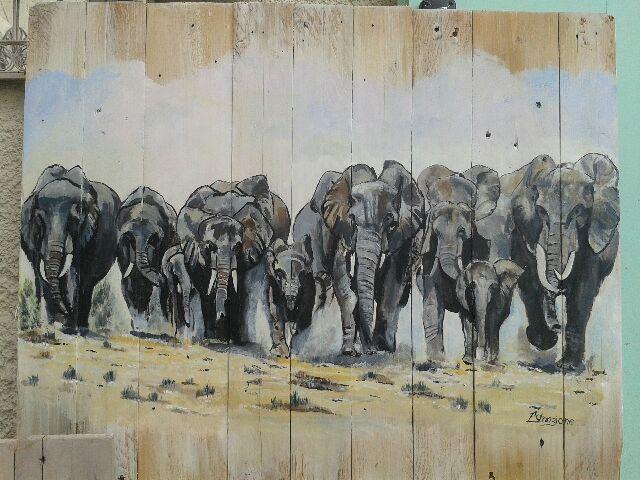 elephants entiers