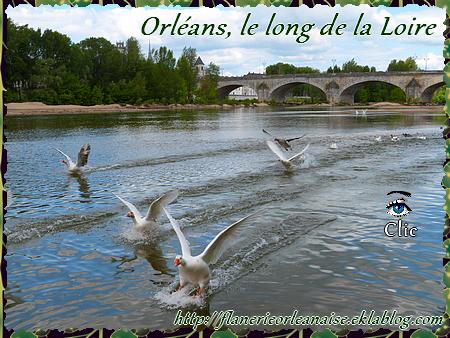 Orléans balade sur les bords de la Loire
