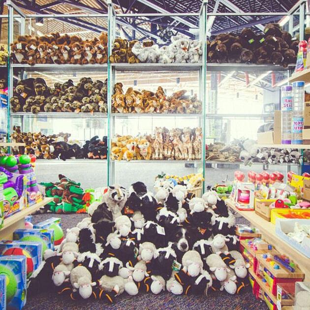Dans un magasin de jouets Momo