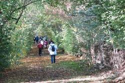La randonnée du 6 novembre à Creully