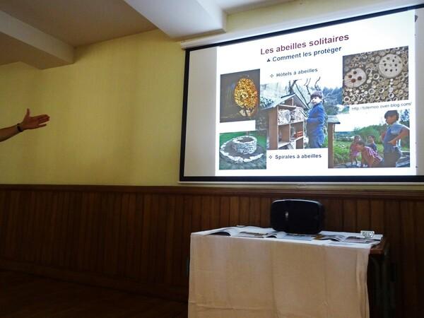 Une passionnante conférence sur les abeilles a été proposée par les Amis du Château de Montigny sur Aube