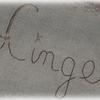 Linge1