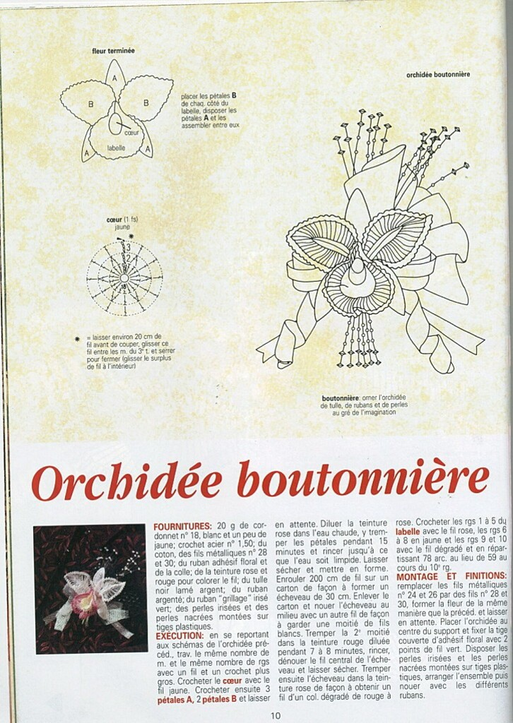 orchidee-boutonniere-expl.jpg