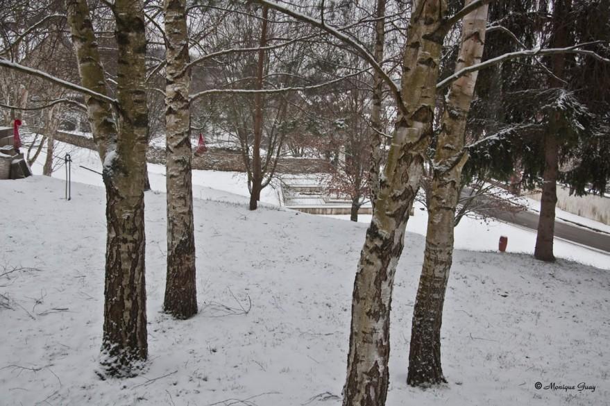 neige-terrain-2140.jpg