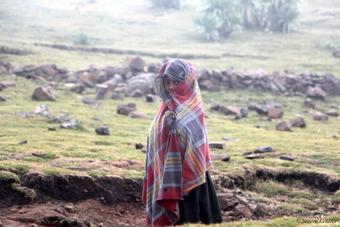 Rencontre en couleur dans le parc du Simien, Éthiopie